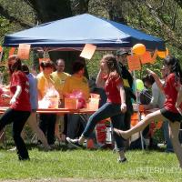 Photos: Syracuse Walk MS - 5/6/12 15