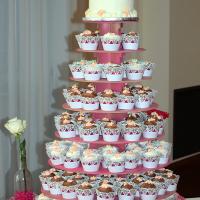 Wedding Photos: Jessica and Richard at Hilton Garden Inn, Auburn, 5/24/15 1