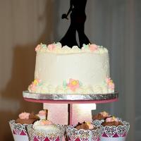 Wedding Photos: Jessica and Richard at Hilton Garden Inn, Auburn, 5/24/15 2