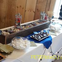 Wedding: Aubrey and Bill at Wolf Oak Acres, Oneida, 7/25/15 14