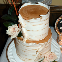 Wedding: Anessa and Jason at the Beacon Hotel, Oswego, 10/17/15 15
