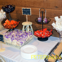 Wedding: Allyssia and Ryan at Arrowhead Lodge, Brewerton, 4/9/16 21