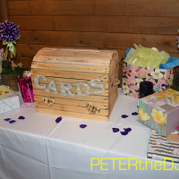 Wedding: Allyssia and Ryan at Arrowhead Lodge, Brewerton, 4/9/16 18