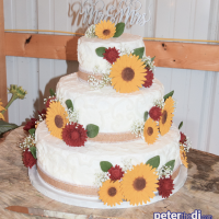 Wedding: Julia and Michael at The 1917 Ranch in Richfield Springs, 9/10/17 12