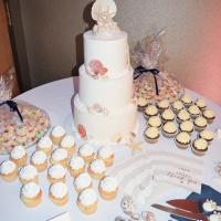 Wedding: Paula and Sarah at Embassy Suites East Syracuse, 2/17/18 10