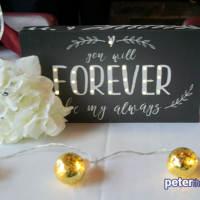 Wedding: Bethany and Brian at Highland Forest's Skyline Lodge, Fabius, 11/3/18 3